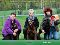 holsteps_tjottes_mallorns1